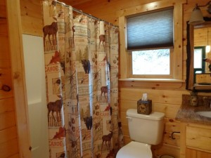48 Mint Lane, Murphy, NC 28906 - Bathroom