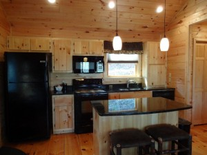 48 Mint Lane, Murphy, NC 28906 -Kitchen