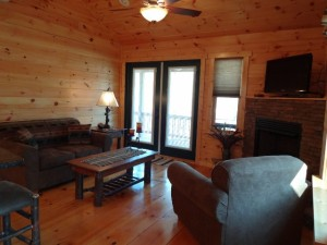 48 Mint Lane, Murphy, NC 28906 - Living Room