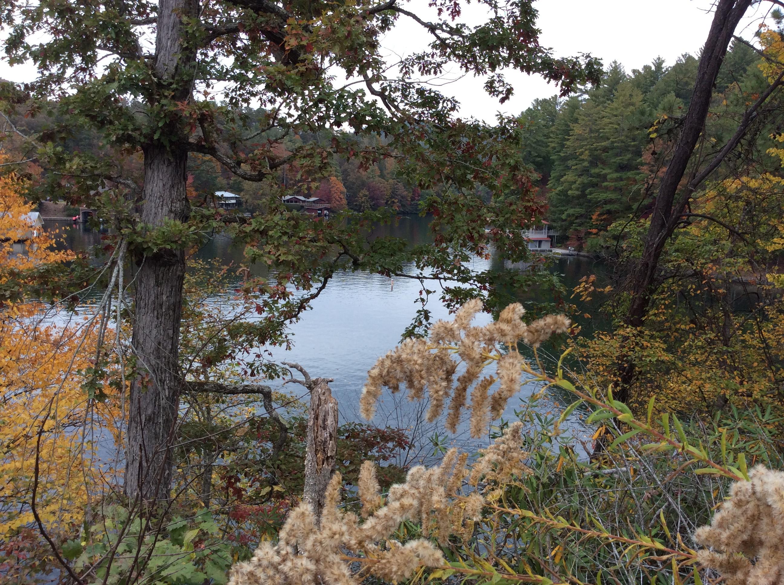 Sierra Springs Kathy S Blog
