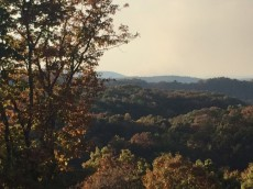 views-1